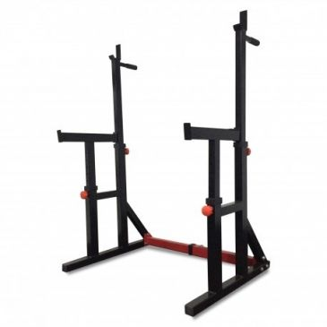 Titanium Strength Squat Rack / Dip Stand